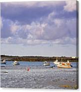 Guernsey Coastline Canvas Print