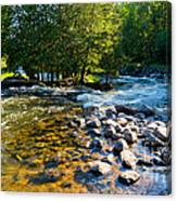 Gull River Canvas Print