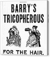 Hair Restorative, 1887 Canvas Print