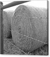 Hay Bales - Black And White Photography Canvas Print