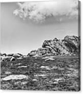 Haytor Rock Canvas Print