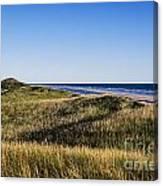 Head Of The Meadow Beach Canvas Print
