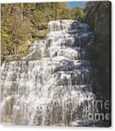 Hector Falls Canvas Print