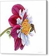 Hello My Flower Canvas Print