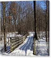 Hiking Trail Bridge With Shadows 3 Canvas Print