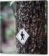 Hiking Trail Sign On The Forest Paths Canvas Print
