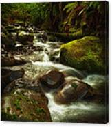 Hoh Stream Canvas Print