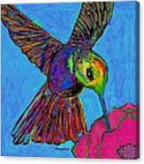 Hummingbird On Blue Canvas Print