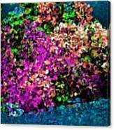 I Love Flowers Canvas Print