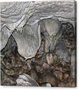 In The Cave Canvas Print