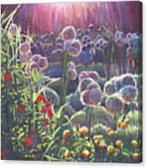 Incandescence Canvas Print