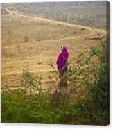 Indian Woman In Field Canvas Print