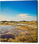 Inverloch Beach Canvas Print