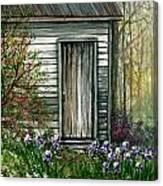 Iris By Barn Canvas Print