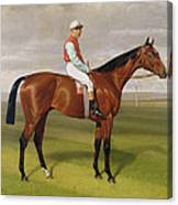 Isinglass Winner Of The 1893 Derby Canvas Print