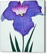Japanese Flower Canvas Print