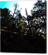 John Muir Trail Canvas Print