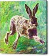 Joyful Hare Canvas Print