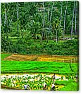Jungle Homestead Canvas Print