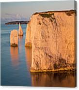 Jurassic Coast Dawn Canvas Print