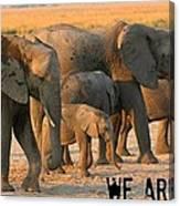 Kalahari Elephants Canvas Print