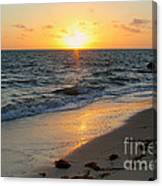 Kamalame Beach Canvas Print