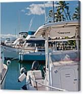 Lahaina Marina Maui Hawaii Canvas Print