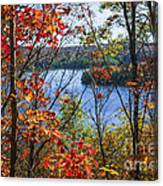 Lake And Fall Forest Canvas Print