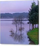 Lake Pateira V Canvas Print