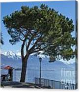 Lakeside With Trees Canvas Print