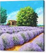 Lavender Lines Canvas Print
