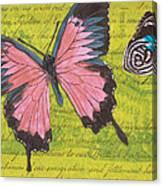 Le Papillon 2 Canvas Print