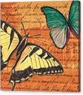Le Papillon 3 Canvas Print