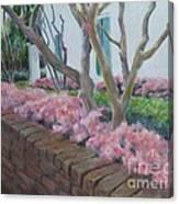 Lemee House Canvas Print