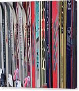 Lets Ski Canvas Print