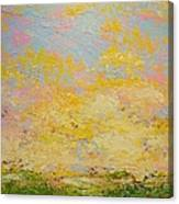 Light And Fluffy Canvas Print