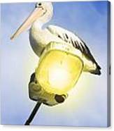 Light Pelican Canvas Print