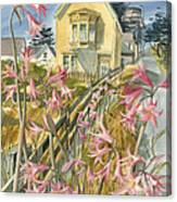 Lillies Of Mendocino Canvas Print
