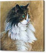 Longhaired Canvas Print