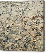 Love On The Rocks Canvas Print