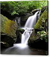 Lower Grotto Falls Canvas Print