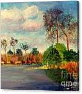 Loxahatchee Nature Preserve Canvas Print