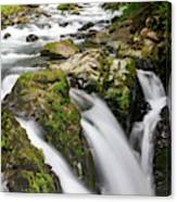Lush Waterfall Olympic National Park Canvas Print