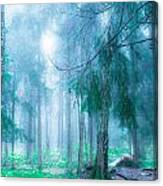 Magic Forest 5 Canvas Print
