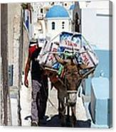 Man And His Pack Mule Canvas Print