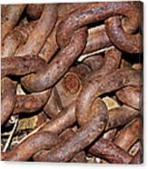 Many Rusty Links Canvas Print