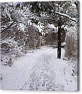 Marginal Way in Winter 2 Canvas Print