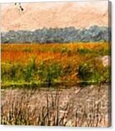 Marsh Land Canvas Print