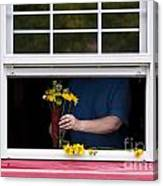 Mature Woman Cutting Flowers In Window Canvas Print