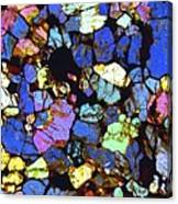 Meteorite Nwa 6435, Light Micrograph Canvas Print